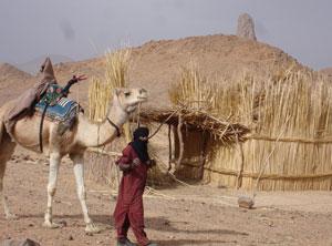 Nomadenvolk In Der Sahara